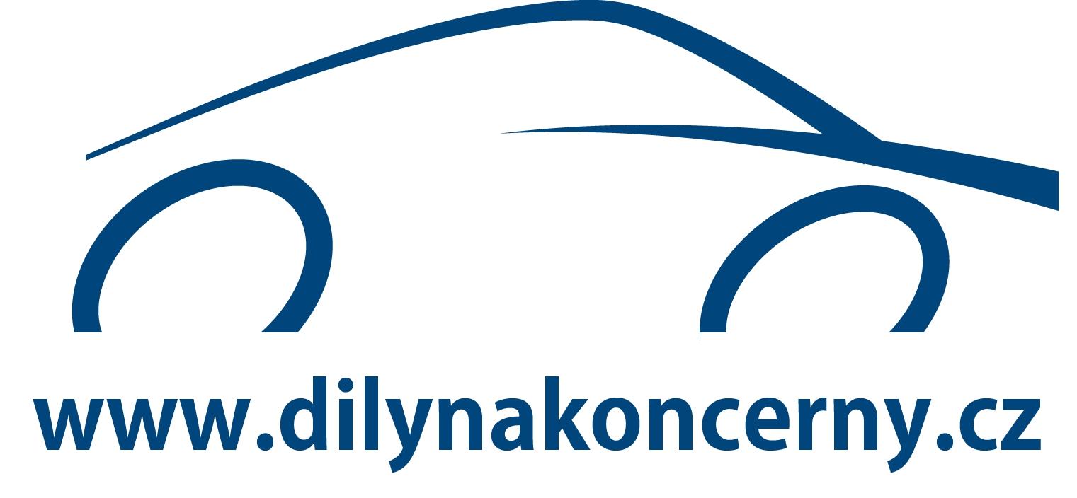 dilynakoncerny2