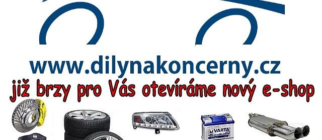 dnk shop